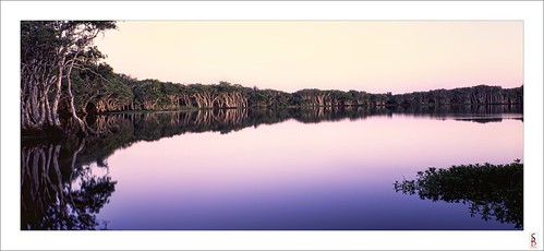 lake water sunrise dawn f2 sinar lennoxhead lakeainsworth sinarf2 stephenbird