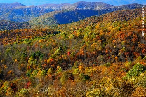 park autumn trees mountains fall colors landscape outdoors virginia photo nationalpark unitedstates foliage photograph va valley deciduous shenandoah viewpoint blueridge skylinedrive mountainrange stanardsville 2013