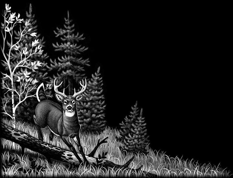 Deer jump over log