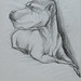 """""""Cão!?""""./""""Dog!?"""". Lápis sobre papel/Pencil on paper, 1986."""
