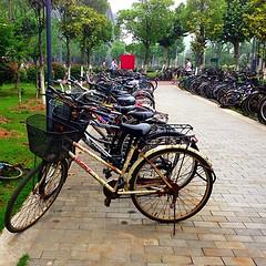 Universidade de Nanquim