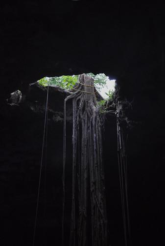 Cenote Samula - Valladolid - Mexico