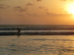 Surfing in the sunset - Bali