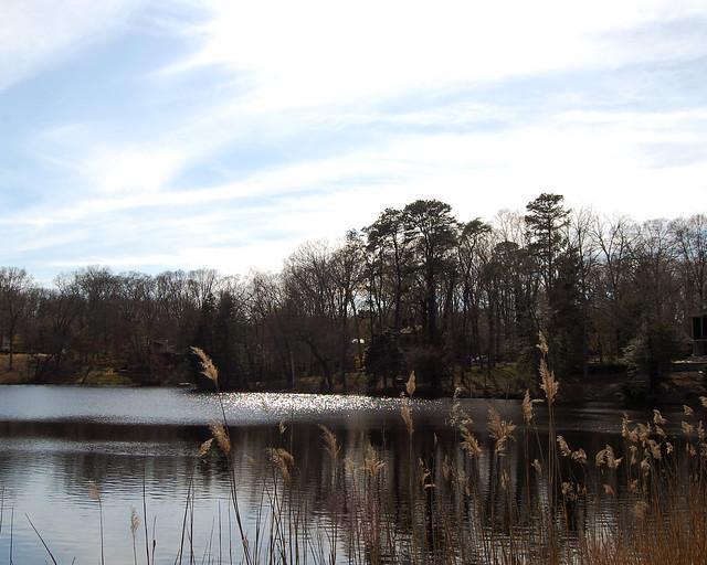 Reflections on Thundergut Pond
