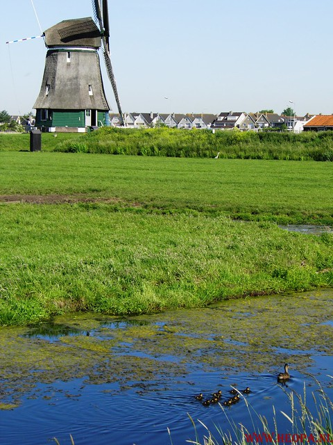 Volendam        26-05-2012       26.5 Km (37)