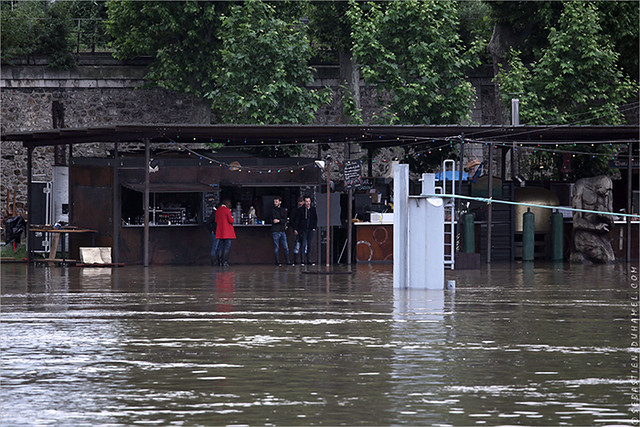 Crue de la Seine, Paris IMG160603_068_©_S.D/S.I.P_Compression700x467