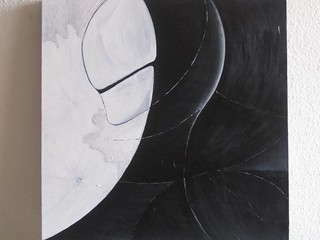black swan finish