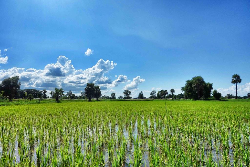 Myanmar - Mandalay - Inwa
