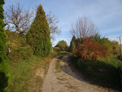 Weinbergsweg-0234