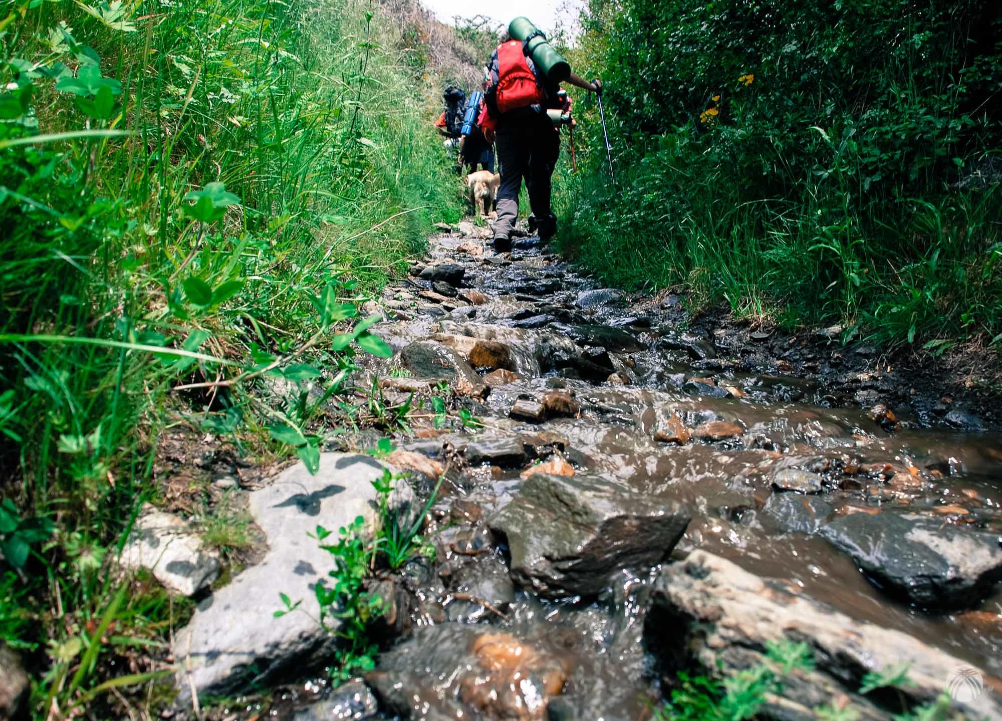 ¿Es un camino o un arroyo?