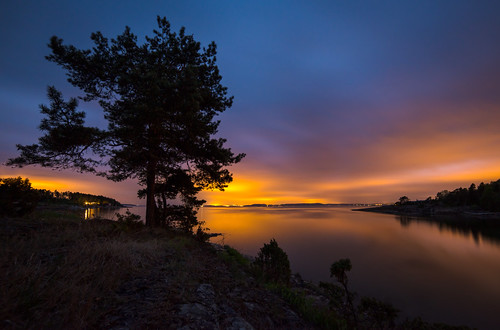 longexposure light sea sky seascape color tree nature silhouette norway night clouds nikon horizon illumination le citylights saturation archipelago d800 hurum 14mm samyang skjøttelvik