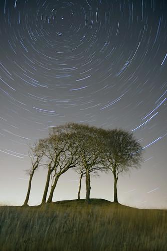 uk longexposure trees light sky nature grass night canon stars landscape movement northeast houghtonlespring canon2870 canon5dmkii