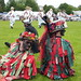 Kinver Country Fair - June 2013