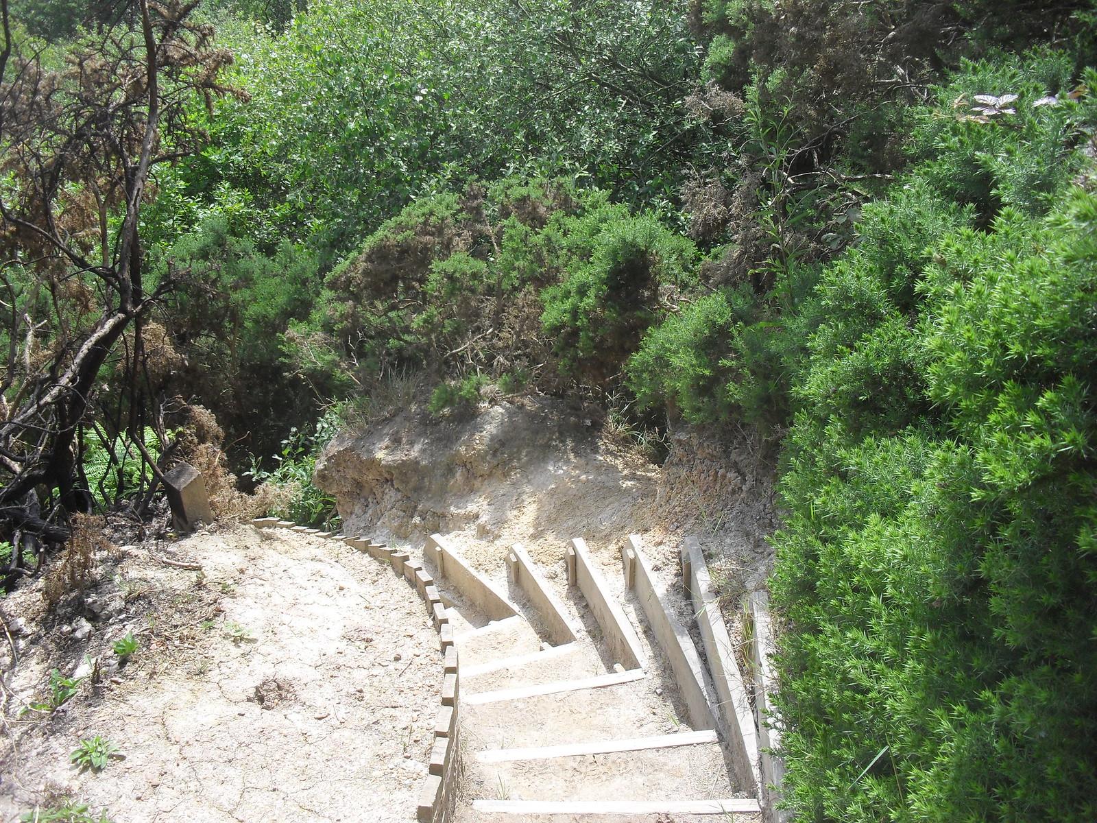 SDC11561 Steps on path down to Fairlight Glen's beach