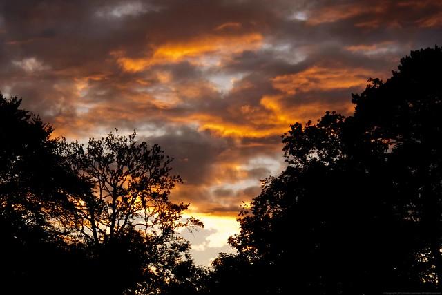 216 of 365 Sunset