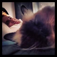 I photobombed Taco's selfie...