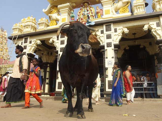 Sri Krishna Matha Temple Hindu Udupi Karnataka South India