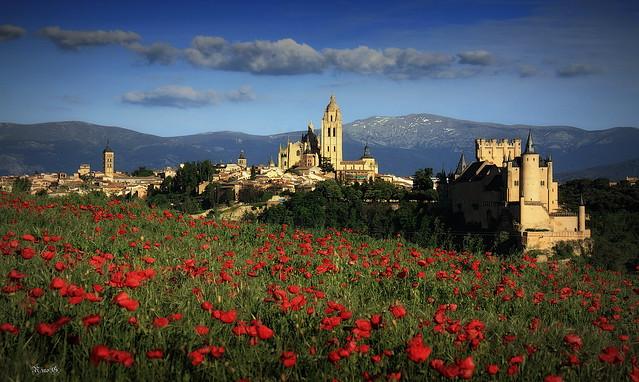 Amapolas con Segovia - España