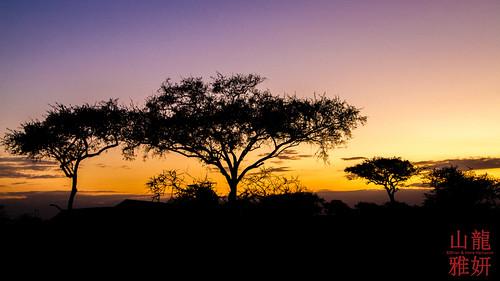 Sunrise on the Serengeti | by DragonSpeed