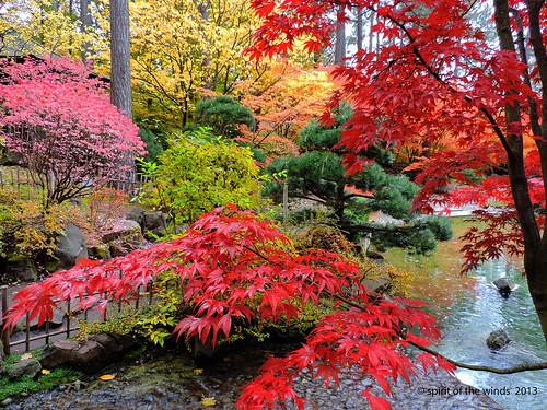 autumn fall gardens japanese otw
