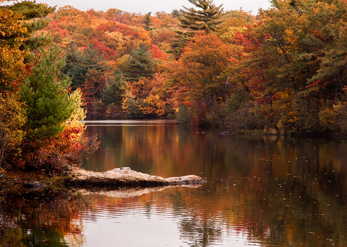 Peak fall color on Birch pond, credit: Jeff Folger | by Massachusetts Office of Travel & Tourism
