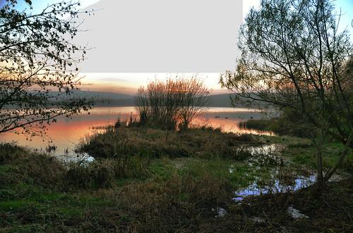 ireland lake water reeds sunsets northern gilford ulster kernan