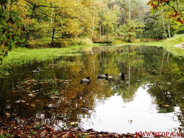 20-10-2012     Wedeblick-   Driebergen        25 Km (172)