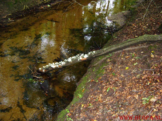 Veluwse Walkery 06-09-2008 40 Km (45)