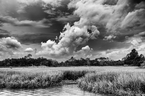 trees summer blackandwhite storm nature clouds georgia scenic marsh savannah heavens tides saltmarsh stormclouds savannahga lowcountry canoneos5dmarkii exploregeorgia canonef1635mmf4 lowcountrystorm