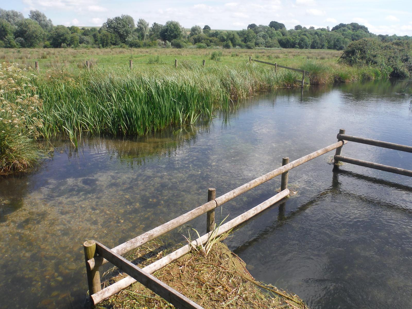 Stream in Test Meadows SWC Walk 265 - Dean to Mottisfont and Dunbridge