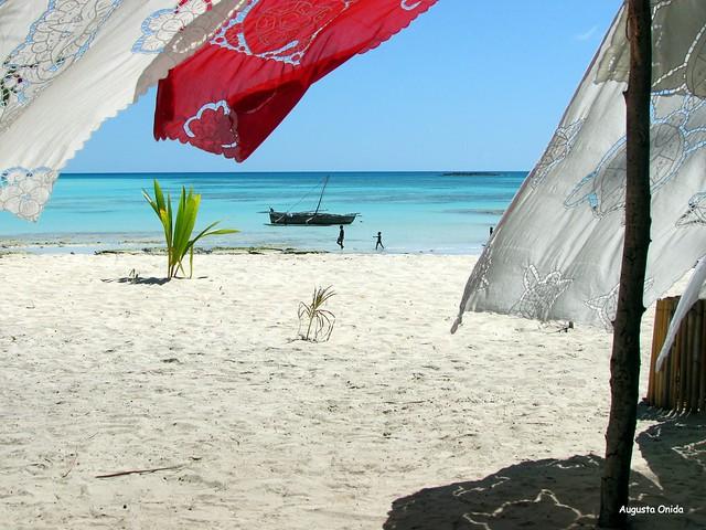 Fresco come il bucato steso al sole...fresh as the laundry hanging in the sun.