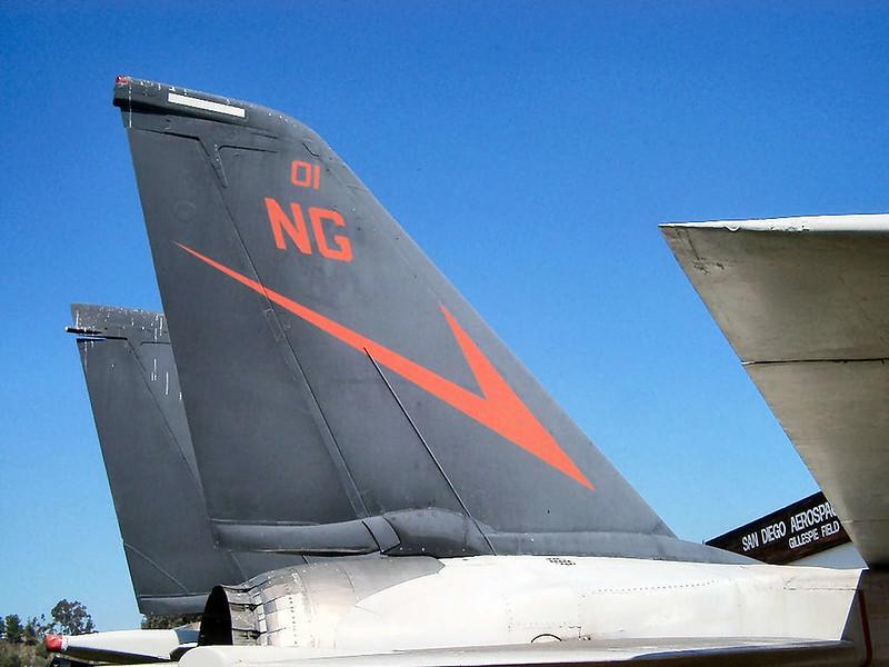 F-14A Tomcat  (3)