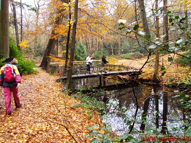 15-11-2009            Gooise lus       18.5 KM    NS Wandeltocht  (39)