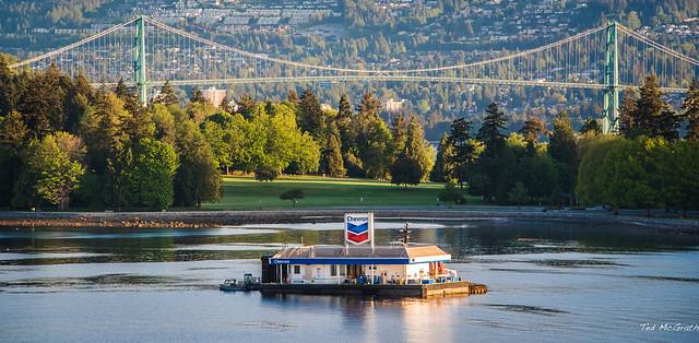 2016 - ms Noordam - Vancouver - Chevron