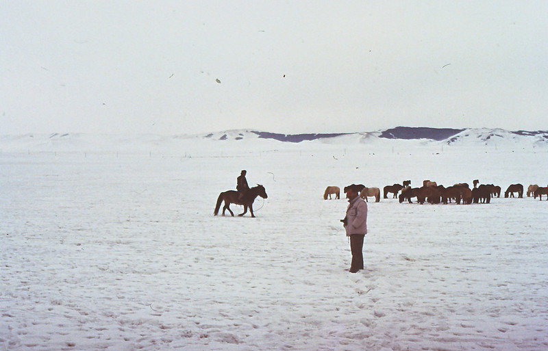 MONGOLIA 1994 01-0007