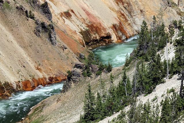 YNP ~ Grand Canyon of the Yellowstone