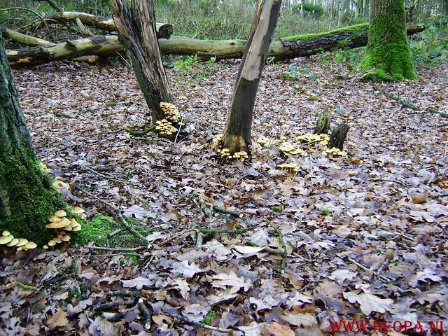 Baarn 40 Km    22-11-2008 (68)