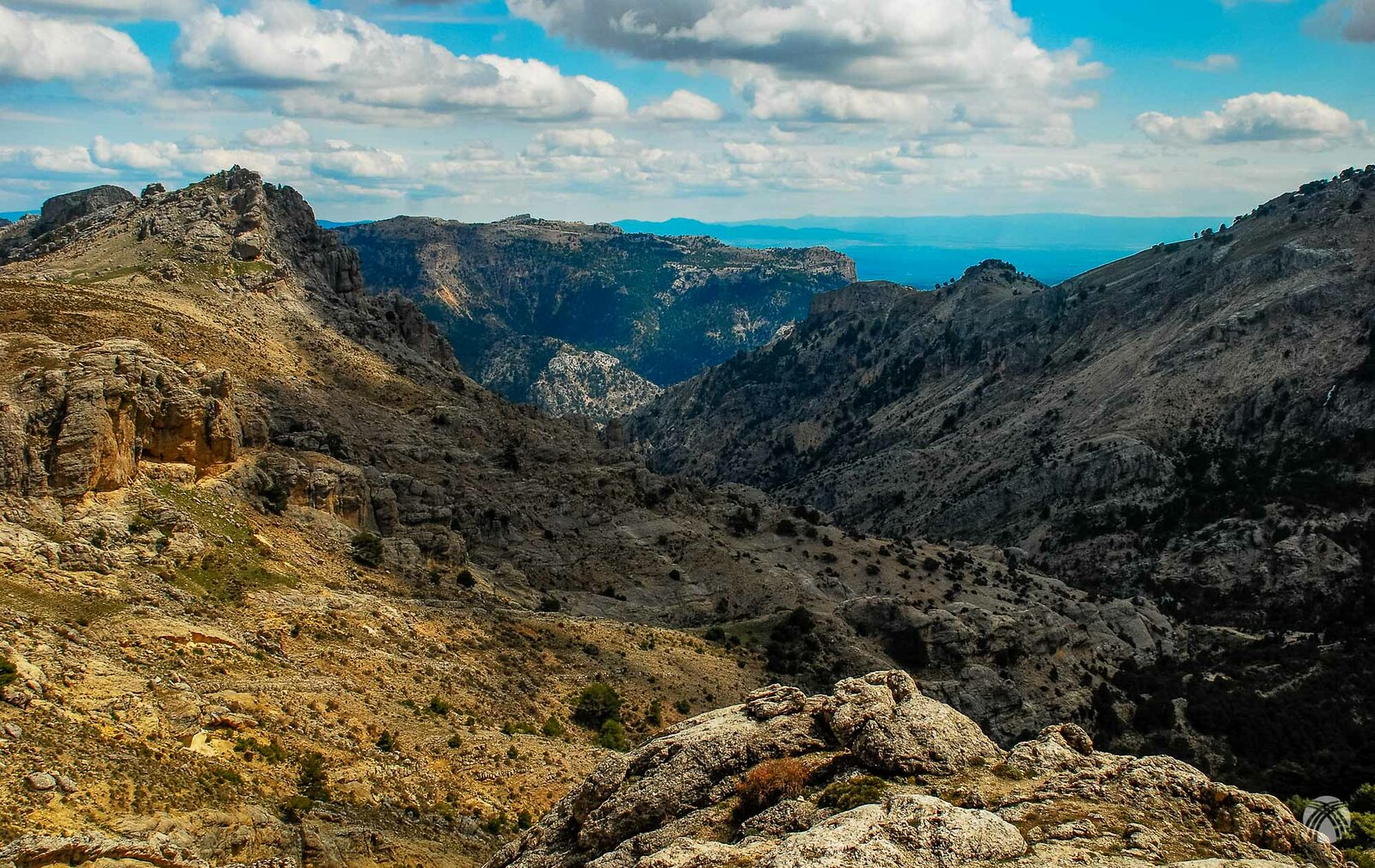 Última vista hacia el Barranco. Se aprecia la cumbre del Puntal de la Zurdica