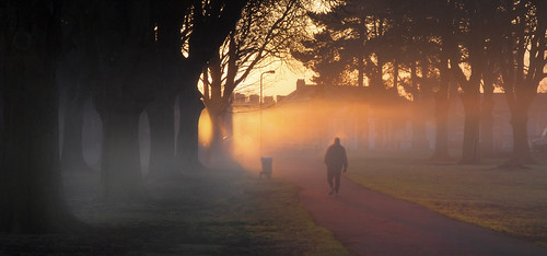 road park uk morning winter light shadow red sky sun mist tree grass leaves silhouette fog wales sunrise canon eos dawn britain outdoor branches cymru january cardiff caerdydd figure fields 5d redsky llandaff pontcanna wentloog llandafffields stevegarrington