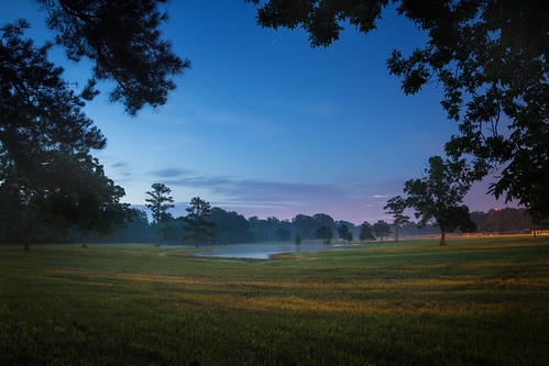 morning rural dawn louisiana horsepond