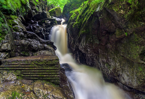 river wales uk moss trees water rocks breconbeacons landscape waterfall