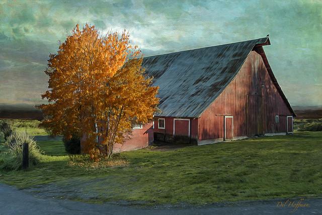 Barn in Afternoon Sun 5514