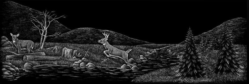 Deer jumping water