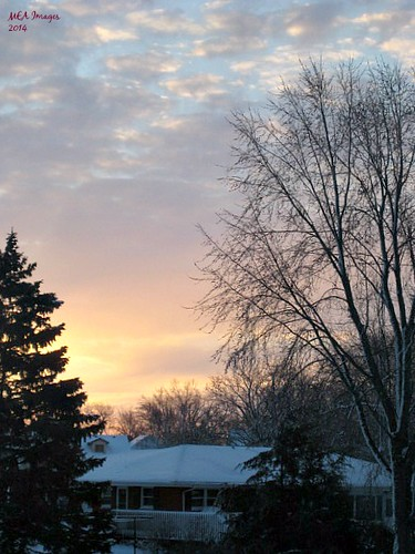 sunrise pastel winter snow trees clouds nature foxlake wisconsin picmonkey:app=editor dawn