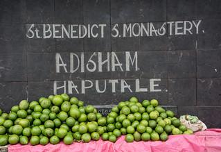 Sri Lanka. Haputale.