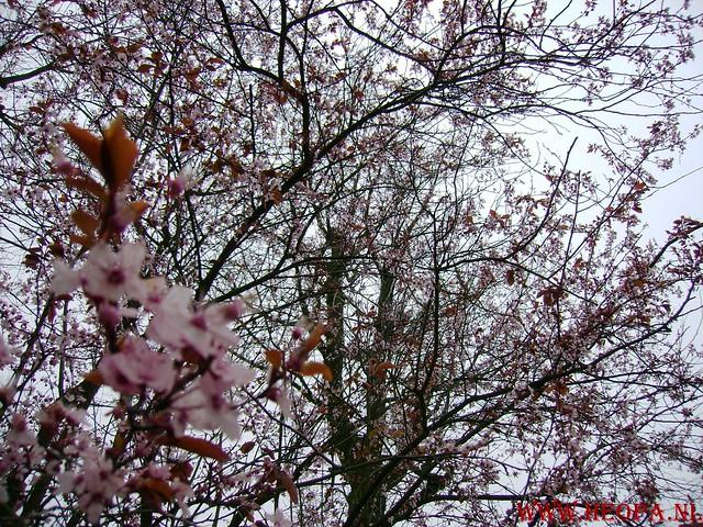 Ugchelen  22-03-2008. 30 Km JPG (51)