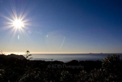ocean sea sun forest bay pacific horizon hill flare ferns tairua moananuiakiwa