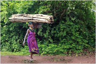 Halakki Vokkaligas ( Uttara Kannada Tribe)   by ramnath bhat