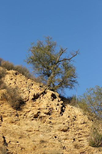 Hike to the M*A*S*H Filming Site (Malibu Creek State Park, California) - Friday November 1, 2013 | by cseeman