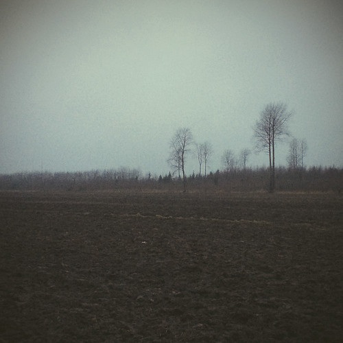 trees winter nature field finland landscape europe iphone kouvola mustajoulu iphone5s vscocam
